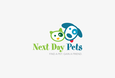 Next Day Pets